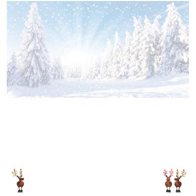 Kalėdinis sveikinimo atvirukas 20081.9724 2