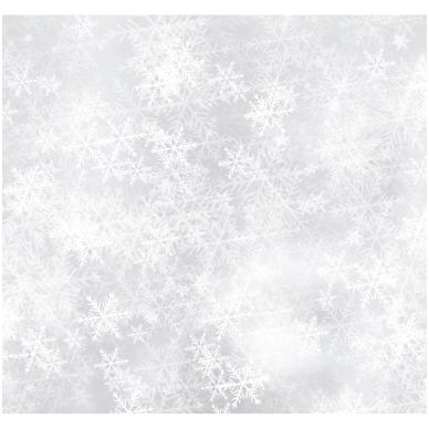 Kalėdinis sveikinimo atvirukas 20081.9732 2