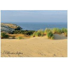 Turistiniai atvirukai 4001.8141 Jūra
