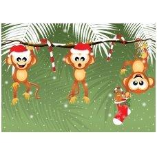 Kalėdinis atvirukas 2007.8876 Beždžionės