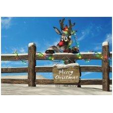 Kalėdinis atvirukas 2007.8886
