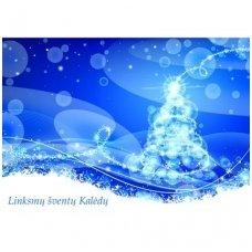 Kalėdinis atvirukas 2007.9120