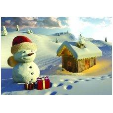 Kalėdinis atvirukas 2007.9121