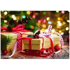Kalėdinis atvirukas 2007.9122