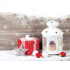 Kalėdinis atvirukas 2007.9271