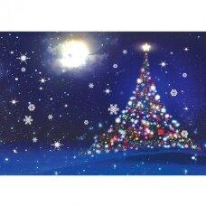 Kalėdinis atvirukas 2007.9273