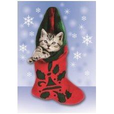 Kalėdinis sveikinimo atvirukas 2007.8258 su tekstu