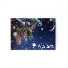 Kalėdinis sveikinimo atvirukas 2007.9720