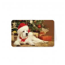 Kalėdinis sveikinimo atvirukas 216.9702