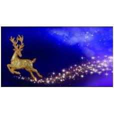 Kalėdinis sveikinimo atvirukas (voko formos) 217.9143