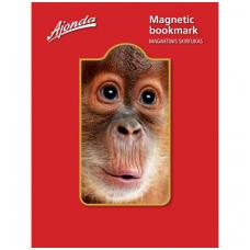 """Magnetinis skirtukas """"Beždžionė"""""""