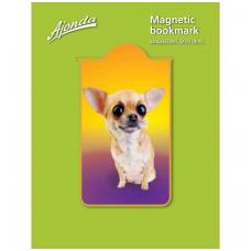 """Magnetinis skirtukas """"Čihuahua"""""""