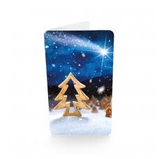 Mažo formato kalėdinis atvirukas 216.9470