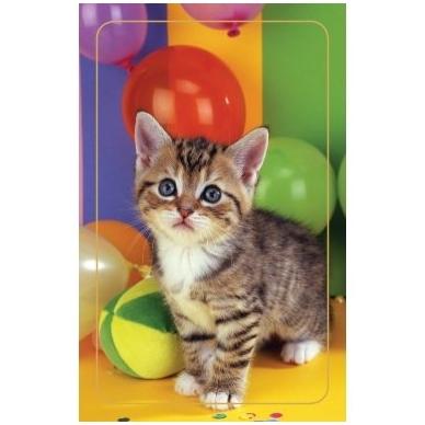 Magnetinis lipdukas 7006.3 Kačiukas