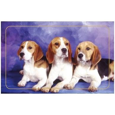 Magnetinis lipdukas 7006.4 Trys šuniukai