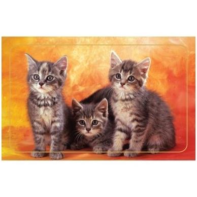Magnetinis lipdukas 7006.5 Trys kačiukai