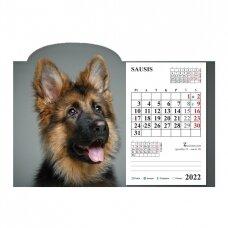 Pastatomas kalendorius 9015.9994