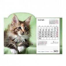 Pastatomas kalendorius 9015.9995