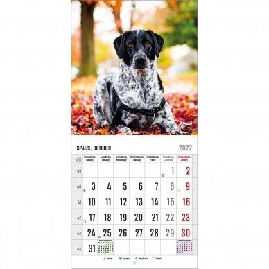 Pakabinamas kalendorius 9007.9991 2