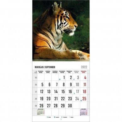 Pakabinamas kalendorius 9007.9993 2