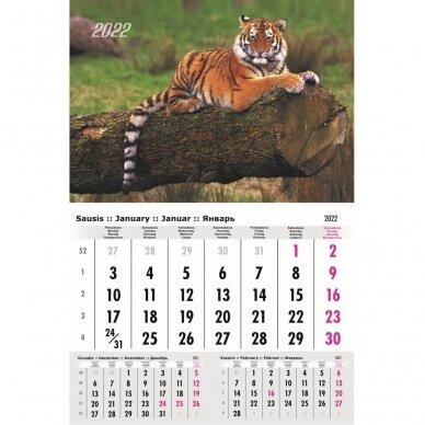 Pakabinamas kalendorius 9013.0001
