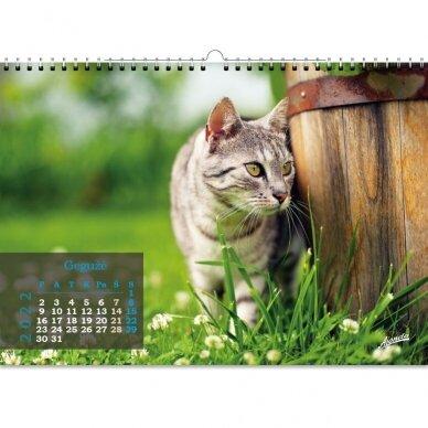 Pakabinamas kalendorius 9016.0012 2