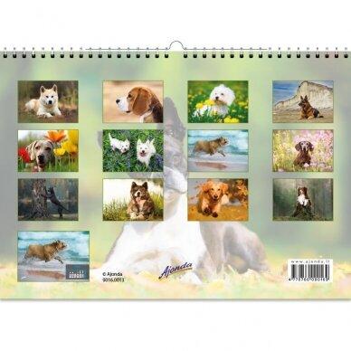 Pakabinamas kalendorius 9016.0013 3