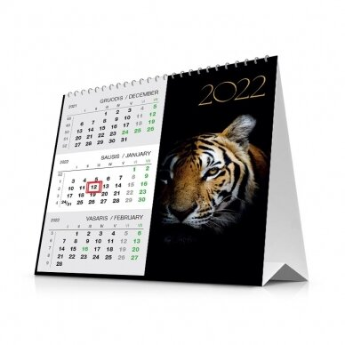 Pastatomas kalendorius 90151.9998