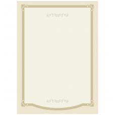 Popierius diplomams 315.8744